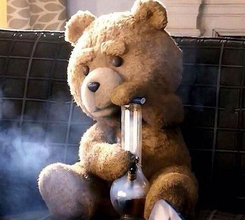 52066a5db3b172b4ebad60e335cea8a0--ted-bear-family-guy